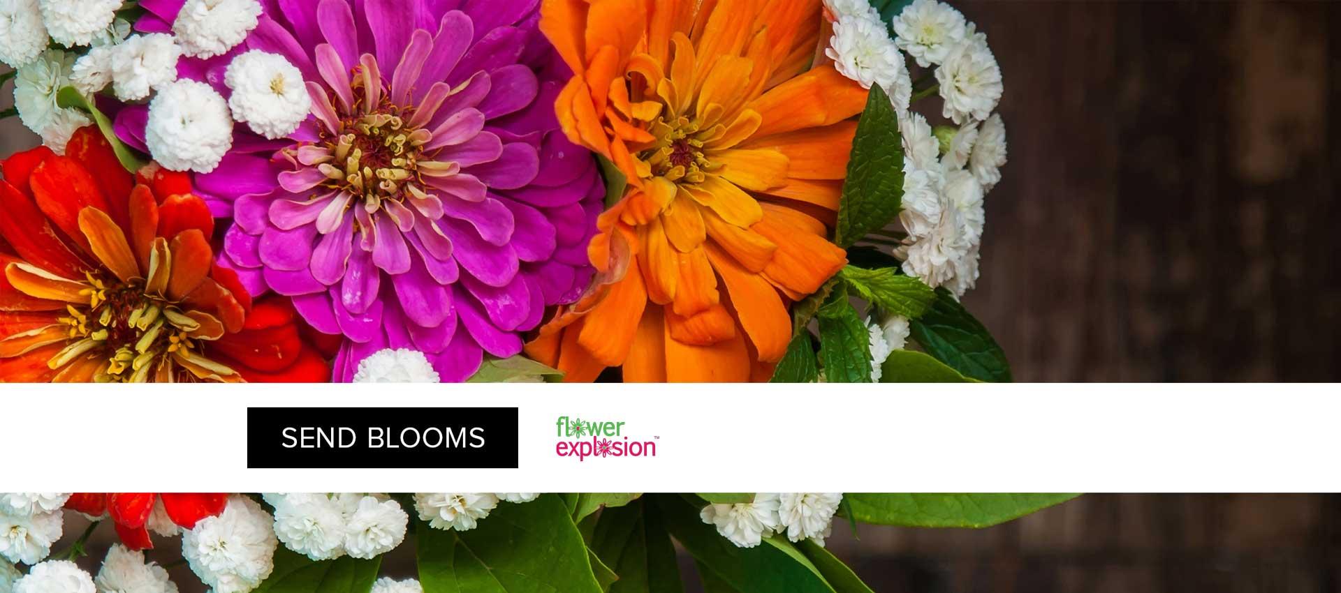 Thông tin tổng quan, khó khăn và kết quả đạt được của dự án Flower Explosion