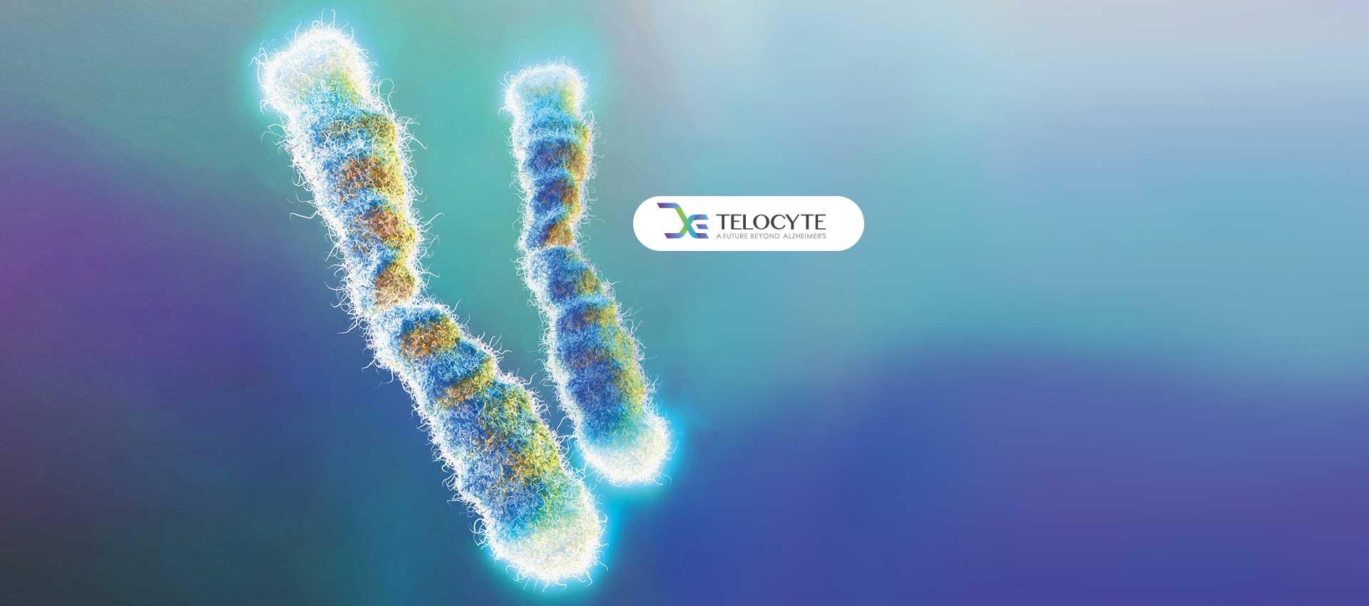 Thông tin tổng quan, khó khăn và kết quả đạt được của dự án Telocyte